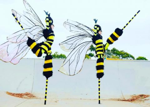 Stilt Walking Bees