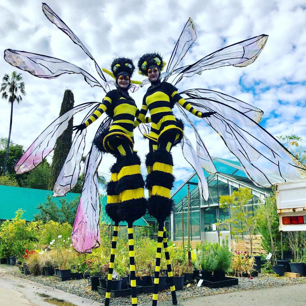 Stilt Walking Bees